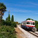 ...e deviazione fu-c... (Daniele Sudati) Tags: fuc moimacco aln aln663 aln663901uc udine cividale treno lineesecondarie