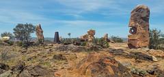 Living desert (pnaudi) Tags: desert outdoor beautyinnature livingsculpture brokenhill