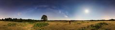 360º (DRGfoto) Tags: nocturna vialactea estrellas arbol haya montaña