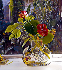 Little Glass Vase on a Windowsill_3688_2 (Rikx) Tags: flowers vase windowsill backlight impatiens glass adelaide southaustralia prism prismaapp iphone4