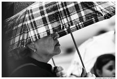 Interlude (Matías Brëa) Tags: paraguas umbrella lluvia rain personas people blancoynegro blackandwhite street streetphotography calle