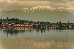 Kashmir..............India. (Rambonp:loves all creatures of this universe.) Tags: jk kashmir tulips flowers yellow wallpaper red white trees green nature park day india paradise blue canon landscape sky clouds silhouette snow mountains hills hillstation touristplace tourism