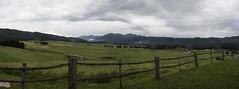 IL PIAN DEL CANSIGLIO (FRANCO600D) Tags: fotocomposizione piandelcansiglio foresta habitat bosco forestadelcansiglio alpago bl canon eos600d sigma franco600d monti montagna prealpi