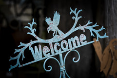 Welcome Place (jah32) Tags: signs sign welcome blue weathered vignette light dark shadow portdover