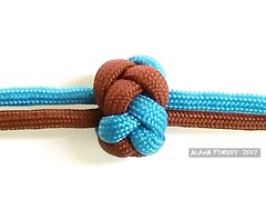 two-strand 5x8 gaucho lanyard knot (A L A N A) Tags: knot lanyard gaucho 5x8 bight узел бриллиант multistrand two strand 2 spanishring bead terminal button stopper chinese celtic turkshead footrope 5lx8b паракорд paracord hoochie twopass 2pass diamond torus ringknot ring cylindrical cylinder australia queensland knots thk facets alana forest alanaforest