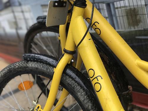 Ofo bike by jonrussell, on Flickr