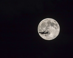"""Ticket to the Moon"" (Susan Colosimo) Tags: fullmoon plane nightphotography flightpath nightsky moon flyby moonandplane fullmoonandplane planeflyingbythemoon"