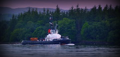 Bound for Garelochhead (Rollingstone1) Tags: tug tugboat sdimpetus rosneathpeninsula argyllandbute trees sky colour art artwork forest darksky marine maritime scotland water sea loch hills mountains