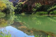 #west_bekaa #lebanon #river -#summer #landscape_photography #nature_photography #landscape #nature #green #reflection #beauty #photo (salam.jana) Tags: westbekaa lebanon river summer landscapephotography naturephotography landscape nature green reflection beauty photo