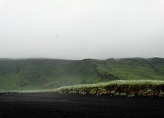 take me somewhere nice (grow-till-tall) Tags: sumar summer ísland iceland vík coast black sand volcanic beach mountains seagull sky fog solitude contemplation reynisfjara