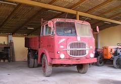 Fiat 642 N6 (samestorici) Tags: camionstorico autocarrodepoca weinleselkw oldtimertrucks vintagetruck historicallorry veicolostorico fiat642 n2 n65 642n6 n6r