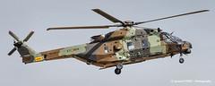 Caiman (Ignacio Ferre) Tags: caimán nh90 helicóptero helicopter spanisharmy spanishairforce spain españa lecv famet madrid aircraft airplane avión aviation military militar nikon landing aeronave nhindustries