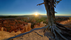 Sunrise at Bryce Canyon (W_von_S) Tags: brycecanyon utah southwest südwesten usa us unitedstates vereinigtestaaten america amerika rocks felsen red redrocks rot rotefelsen sonne sonnenaufgang sun sunrise baum tree sonnenstern sunburst light licht gegenlicht backlight sony wvons werner outdoor landschaft landscape panorama paysage paesaggio natur nature inspirationpoint
