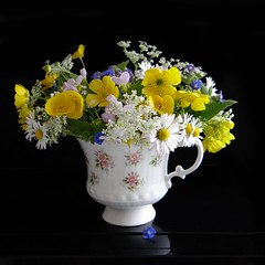A Cup Full Of Wild Spring Flowers (Jean Turner Cain) Tags: flower flora floral flowers fleur bloem blomst stilllife wild china cup jeanturnercain