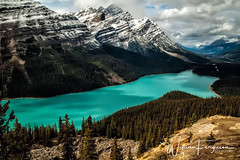 PeytoLake_Signed (wayazo) Tags: lakes mountains rockies peyto wayazo canada