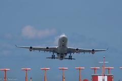 DSC_1284 (janmn76) Tags: airplane airport takeoff runway skies airways sas cph lufthavn fly start luftfart københavnslufthavn nikon nikonphotography d7200 tamron 300mm holidays travel