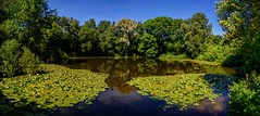 Pool of Peace (Eric@focus) Tags: wwi pool bomb war flanders peace ice nikond7100 panorama westhoek 19141918 crater explosion spanbroekmolenkrater 1917 greatphotographers imagecompositeeditor serenitynow absolutelystunningscapes tokina1116mm