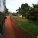 16-09-25 Uganda-Rwanda (13) Masindi R01