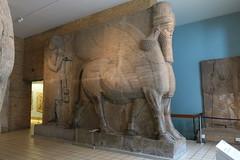 May 10: 89 Lamassu (Aquafortis) Tags: art london england museums assyrian