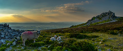 Not a bad place to grow up on a beautiful day in May, Stiperstones, Shropshire (christaff1010) Tags: sunlight sun clouds d750 landscape sunset stiperstones britain hills mountains sky shropshire panorama green uk rocks england unitedkingdom gb