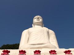 Buddha at Kandy (jeff.dugmore) Tags: srilanka kandy ceylon asia outside outdoors sky blue tropics travel holiday vacation tropical statue pink buddhu olympus white