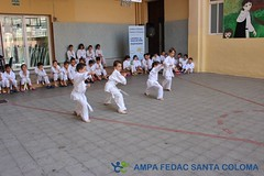 Exhibició Karate-do Shotokan