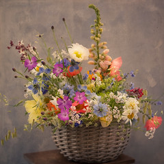 Carol's June Blooms (photoart33) Tags: flowers summer colourful basket square stilllife foxglove loveinthemist poppies grasses cornflower rustic aged textured