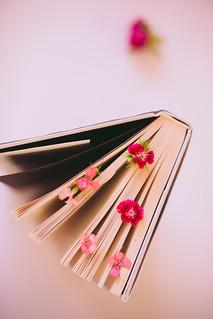 21/52 books | libros