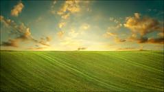early spring (Katarina 2353) Tags: spring sunset field katarinastefanovic katarina2353 landscape agriculture