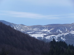 DSCN9538 (Gianluigi Roda / Photographer) Tags: springtime earlyspring march mountains woods trees snow apennines