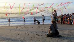 IMG_0172.1 (mikehogan2) Tags: padreisland nationalseashore kempsridley sea turtle release texas nps