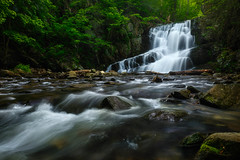 WELCOME TO THE JUNGLE (pidalaphoto) Tags: earlymorning cascades hudsonhighlands upstateny waterfall waterfalls spring water brook newyork indianbrookfalls hudsonriver garrisonny indianbrook hudsonvalley