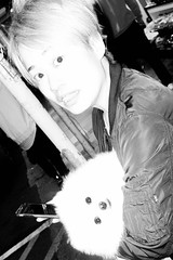 Untitled (kenwalton) Tags: animal animals asia china dog dogs electronics flash flashphotography gadget hk hongkong pet pets phone photography street streetphoto streetphotography urban streetphotographer