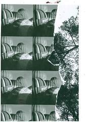 surreal (MariaDemine) Tags: sureal blackwhite collage layers experimental