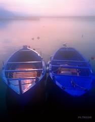 Luci del mattino-Morning lights (TRICOR 46) Tags: alba barche mare nebbia