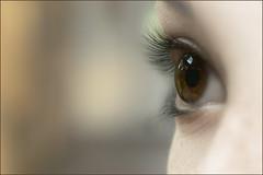 Eye of a doll. (Gudzwi) Tags: eye auge puppe porträt mädchen macro doll