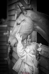 Tenderness (AnthonyCNeill) Tags: girl horse thoroughbred racehorse stables cute nikon d750 85mm primelens mädchen chica pferd caballo cheval fille schwartzweiss blackandwhite monochrome blancetnoir blancaynegra face hands profile portrait equine