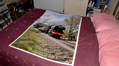 A bit big! (smcnally24601) Tags: bluebell railway print a0 flying scotsman railroad steam locomotive easter spring england english britain british