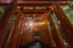 _R2A8396 (鹽味九K) Tags: 伏見稲荷大社 京都 kyoto 千本鳥居 鳥居 temple 星芒 神社 canon 1635mmf28l 5dlll japan 廟