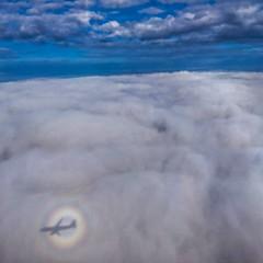 Reflection of aeroplane and sun (shikhasingh1) Tags: sun sunrays sunrings clouds colorful aeroplane floating reflection blue white travel