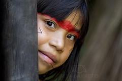 Divina Kuikuro (Rita Barreto) Tags: ãndia ãndiakuikuro crianã§aindãgena indiadomatogrosso etniakuikuro parqueindãgenadoxing㺠matogrosso centrooeste brasil índia índiakuikuro criançaindígena parqueindígenadoxingú