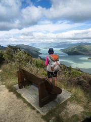 Bench (newzild) Tags: newzealand teararoa hiker tramper trail route long distance capereinga bluff nzl queen charlotte track bench seat view inlet