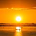 Light Hunters | Sunset - Corumbá, MS #Brazil
