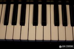 """adam zyworonek fotografia lubuskie zagan zielona gora • <a style=""""font-size:0.8em;"""" href=""""http://www.flickr.com/photos/146179823@N02/34959007905/"""" target=""""_blank"""">View on Flickr</a>"""