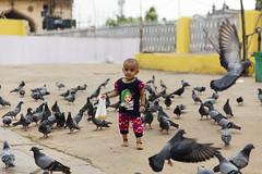 Cutie! (Arpa Ghosh) Tags: charminar history laad bazar market telangana hyderabad tourism india canon 121clicks heritage nizam qutub