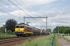 20170531 RRF 4402 + ketels, Deventer (Bert Hollander) Tags: deventercolmschate dvc rotterdamrailfeeding loc 4402 eloc locomotief serie 1600 bij ketelwagens zans gatx lotos goederentrein cargo rrf trein 41701bhijsm