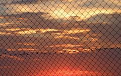 Caged sunset (Alveart) Tags: guatemala lake suramerica southamerica latinoamerica latinamerica centroamerica centralamerica alveartluisalveart peten elpeten lago petenitza flores isladefloresguatemala isla island