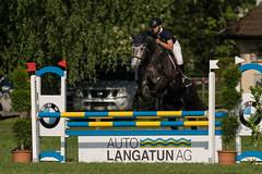 A9902591_s (AndiP66) Tags: springen langenthal pfingstspringen bern 2017 juni june 3juni2017 pferd horse schweiz switzerland kantonbern cantonofbern concours wettbewerb horsejumping springreiten pferdespringen equestrian sports pferdesport sport sony alpha sonyalpha 99markii 99ii 99m2 a99ii ilca99m2 slta99ii sony70400mm f456 sony70400mmf456gssmii sal70400g2 amount andreaspeters