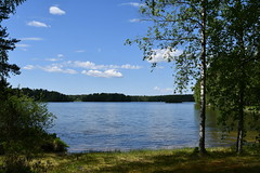 DSC_5559 (jari n) Tags: järvimaisema kisko