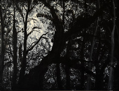 Black Forest - Canvas (bradytreehorn) Tags: art painting canvas cardboard black white monochrome forest night light dark creepy mysterious